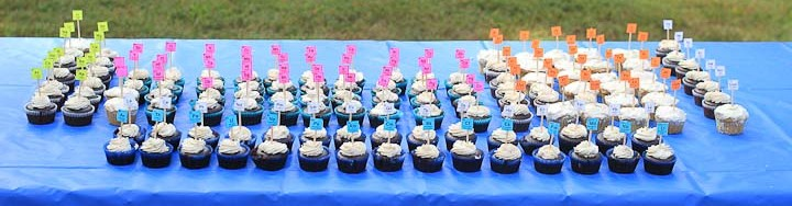 Periodic Table of Cupcakes . . . from the birthday celebration of a young homeschooler whose passion is chemistry